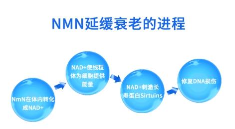 三周销售破万瓶 金达威NMN为何持续遭追捧?