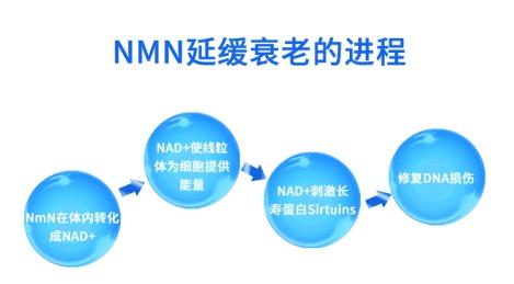 金达威携NMN引领抗衰板块发展 社会热切关注